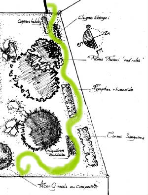 Votre Projet Le Jardin FengShui