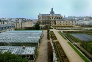 7_Les-Serres-Et-Collections-Le-Potager-Du-Roi