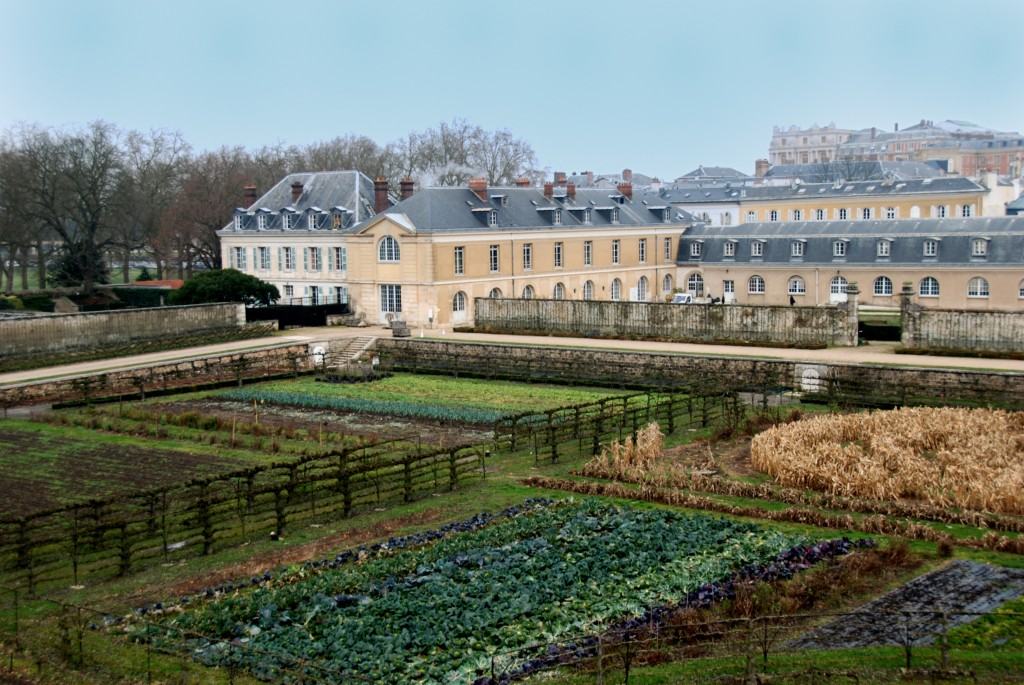 Histoire-Le-Potager-Du-Roi-Le-Jardin-FengShui