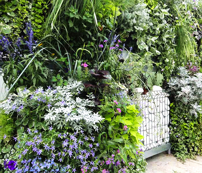 8 mon mur v g tal le jardin feng shui. Black Bedroom Furniture Sets. Home Design Ideas