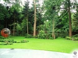 1.Jardin-Plume