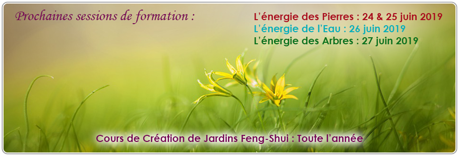 Formation Feng-Shui